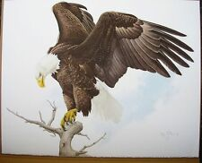 American Bald Eagle Print  Glen Loates Signed Numbered Free Shipping Canada USA