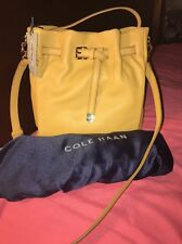 Cole Haan Hobo Handbag