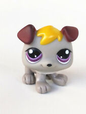 Littlest Pet Shop LPS WJ815 Cute Grey Animal Toys For Boys & Girls