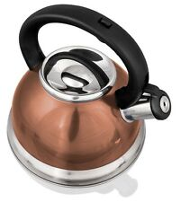 Stainless Steel Whistling Tea Kettle - 2.8 Liter Tea Maker