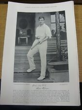 1895 Cricket: Famous Plate/Picture - Gwynn, L H [Ireland] - on reverse - Wostinh