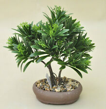 Bonsai Tree in Clay Pot, Artificial Plant Decoration for Office and Home 25 cm