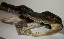 Alligator Head Real American Alligator [2 PACK]