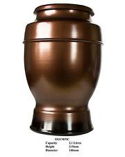 Adult Cremation Urn 2.1 Litres