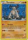 Terrakion 84/113 B&W Legendary Treasures HOLO MINT! Pokemon