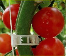 1000 XL Tomato & Veggie Garden Plant Support Clips for Trellis Twine Greenhouse