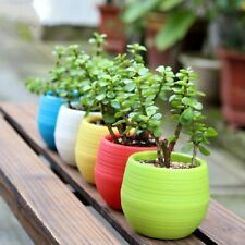 New 1Pc Candy Plastic Flower Pot Plant Jar Home Garden Table Box Random Gifts