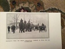 75-3 Ephemera Ww1 Picture 1917 berlin elephants doing war work