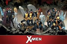 X-MEN - TEAM CHARACTERS POSTER - 22x34 - MARVEL COMICS 14857