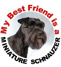 2 Miniature Schnauzer Car Stickers No 3 By Starprint