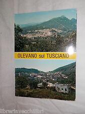 Vecchia cartolina foto d epoca di Olevano sul Tusciano panorama veduta scorcio