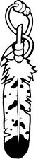 """Indian Feather Vinyl Decal Sticker Truck Window- 6"""" Tall White Color"""