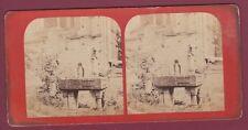 STEREO 130615 - ANGERS - Musée des Antiquités - statue jardin