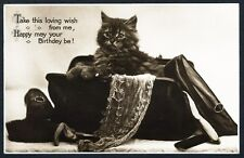 FLUFFY KITTEN in Woman's Purse REAL PHOTO Postcard 1929 BIRTHDAY Greeting CAT
