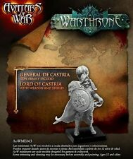 Avatars of War: Lord of Castria with weapon and shi - AOW63 -Warhammer Character