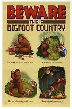 BEWARE, This is Bigfoot Country Lessons, Sasquatch, Yeti - Modern Funny Postcard