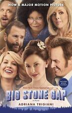 Big Stone Gap by Adriana Trigiani (2015, Paperback, Movie Tie-In) EE1125