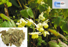 DR T&T 100g dry herbs of  Horny Goat Weed/Epimedium /  yin yang huo