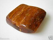 Natur Bernstein Honig mit Einschlüssen Poliert 30,5 g/4,7 x 4,2 x 1,7 cm Amber