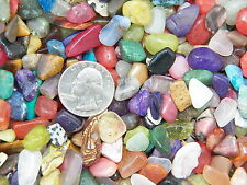 2000 Carat Lots of Size #2 Tumbled Polished Gemstones + A FREE Faceted Gemstone