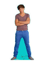 """New 1D One Direction Louis12"""" Mini Standee"""
