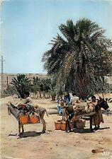 BR56964 ane donkey Maroc vendeurs d eau water carriers   Africa   Morocco