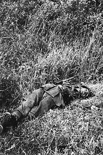 WW2 - Photo - Soldat allemand mort dans le bocage normand