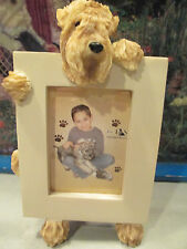 soft coated wheaten    picture frame   15-41