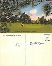 Usa ASHEVILLE N.C. GOLF Golfind in the land of the long leaf pine (R-L 159)