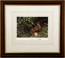 1997, DAVID SHEPHERD, Nuts, red squirrel, RARE limited edition print, FRAMED