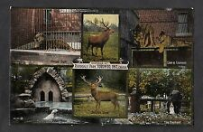 C1910 Multiviews of animals at Riverdale Park Toronto, Canada