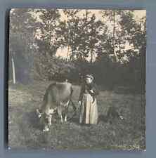 Belgique, Dame Belge avec ses chien et une vache  Vintage silver print.  Tirag