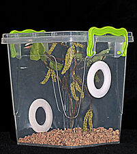 Praying Mantis,Stick Insect,Arboreal Vivarium.Cage,Tank,Enclosure