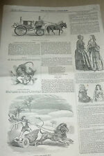 LION GENERAL TOM THUMB CARRIAGE ANTIQUE PRINT 1844 CARTERS LION CHARIOT