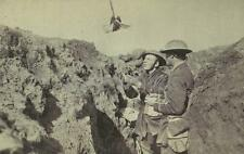 "British Army Soldiers Trench Carrier Pigeon World War 1 6x4"" Reprint Photo gw"
