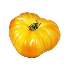 25 Graines de Tomate Ananas BIO seeds plantes légumes ancien potager
