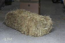 Hay Bale for Horses - Approx 20kg - 110x50x40cm - BOXED - FREE P&P