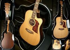 "COLE CLARK ""FAT LADY""2  FL-2 AC -Spruce-Rosewood -Special Edition!!!"