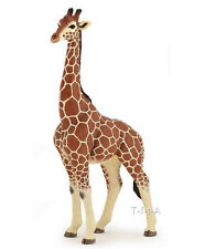 FREE SHIPPING | Papo 50149 Giraffe Male Model Animal Figurine - New in Package