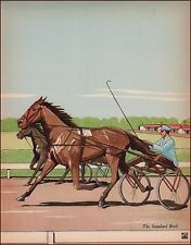 Standardbred Harness Horse, Sulky by James Cannon vintage print authentic 1938