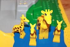 Lego Duplo Zoo - Giraffen Set, Mama mit 3 Baby Giraffe für Zoo, Zirkus Tiere K29