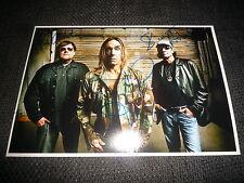 Iggy pop & the stooges signed autographe sur 20x30 cm photo inperson rare