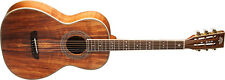 Washburn Parlor Series | WP55NS Acoustic Guitar, Brand New in Box