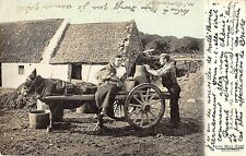 BR81533 irish milk cart killarney types folklore donkey ireland