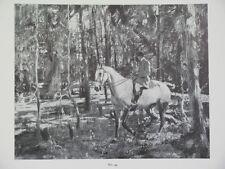 Vtg A J Munnings Book Plate Print Equestrian Sporting Art 1937 Horses English
