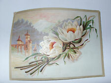 VICTORIAN SCHNULL-KRAG COFFEE, INDIANAPOLIS, TRADE PICTURE CARD Raised flowers