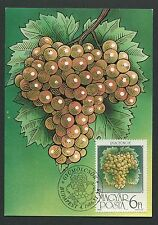 UNGARN MK 1986 FLORA WEINTRAUBEN TRAUBE WINE GRAPE UVA MAXIMUM CARD MC CM d6035