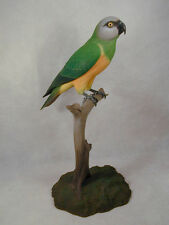 Sengal Parrot Original Wood Carving