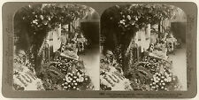 Underwood Stereoview of Floral Tributes to President McKinley, White House, 1901