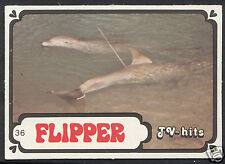 Monty Gum Card - 1986 TV Hits - Flipper - Card No 36